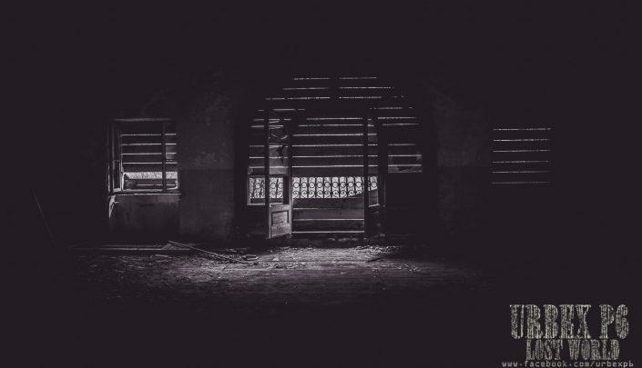 fotografia zwierząt-Fotografia ślubna- fotograf na ślub-Fotograf Rybnik-Rybnik fotografia Piotr Wójcik-fotograf Rybnik-fotografia zwierząt Rybnik -Rybnik fotograf Piotr Wójcik-fotograf na ślub-fotografia ślubna- fotograf Śląsk-Piotr wójcik Rybnik-polecany fotograf- tani fotograf ślubny